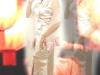 旗袍-3-粉蝴蝶旗袍