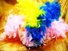 帽子-24-彩色羽毛帽