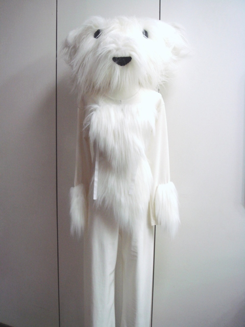 特殊-47-白狗熊