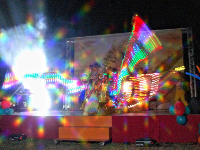 LED炫光孔雀鳳凰舞